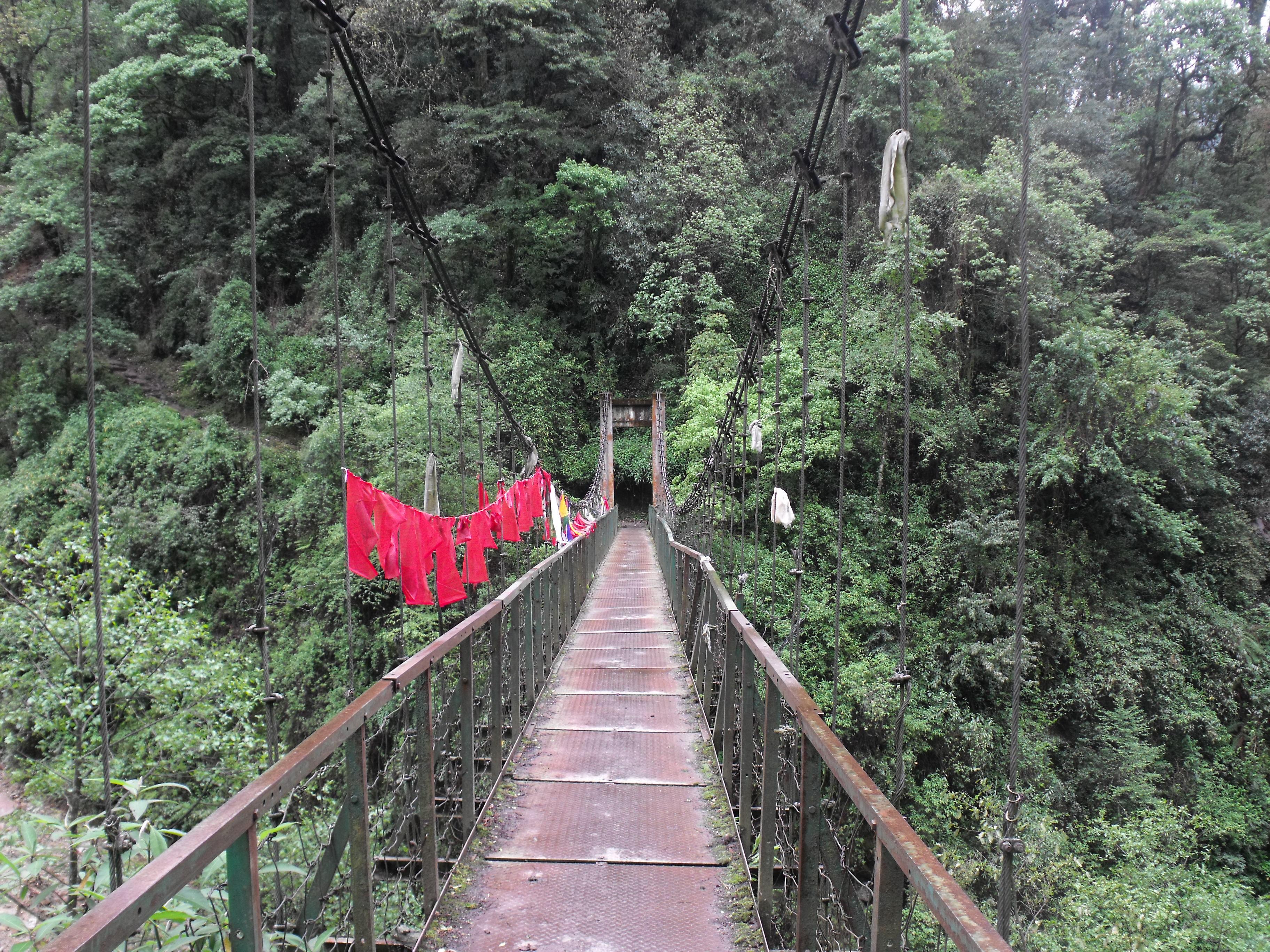Roundtable: <br/>Bridging Divides in Buddhist Studies