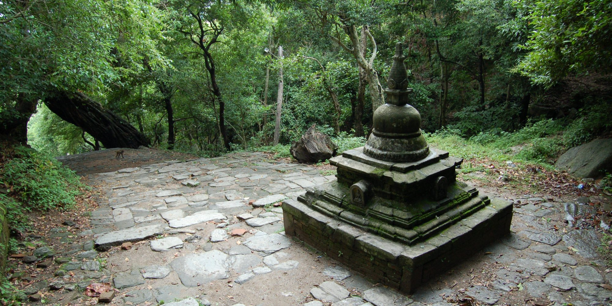 Ho Centre Sponsors Leading Buddhist Studies Conference
